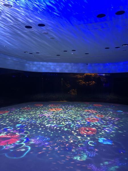k-Xpark-Aquarium4
